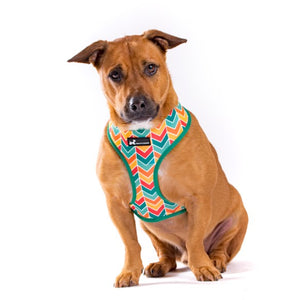 Reversible Dog Harness - Chevrons