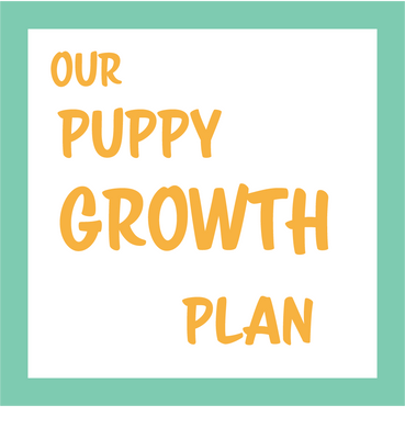Our puppy growth plan