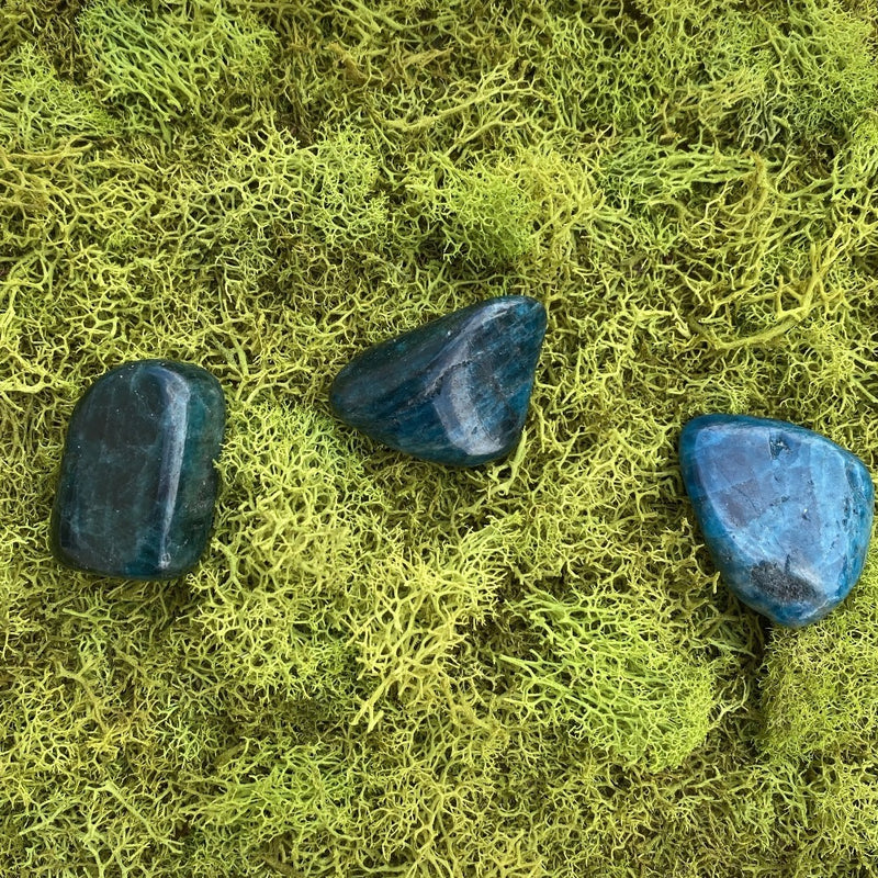Blue Apatite-Set of 3