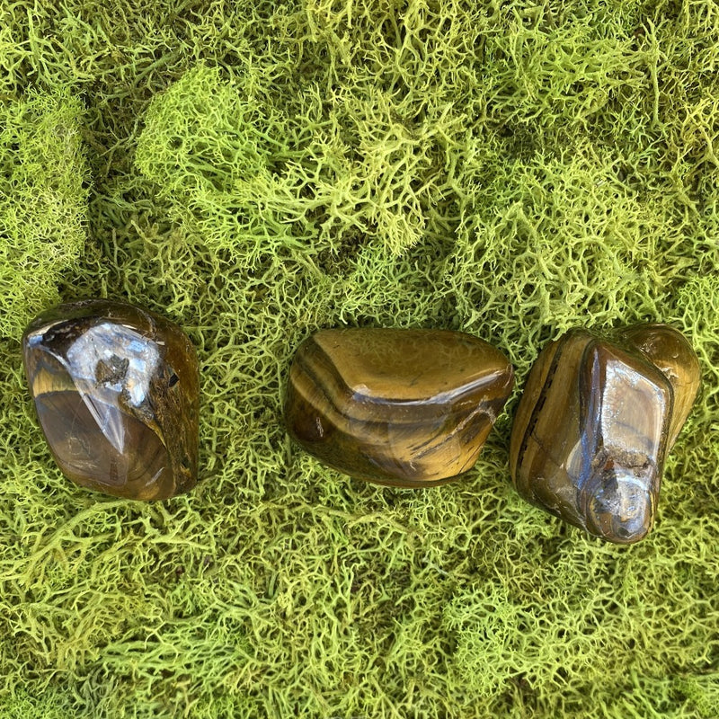 Tiger's Eye-Set of 3