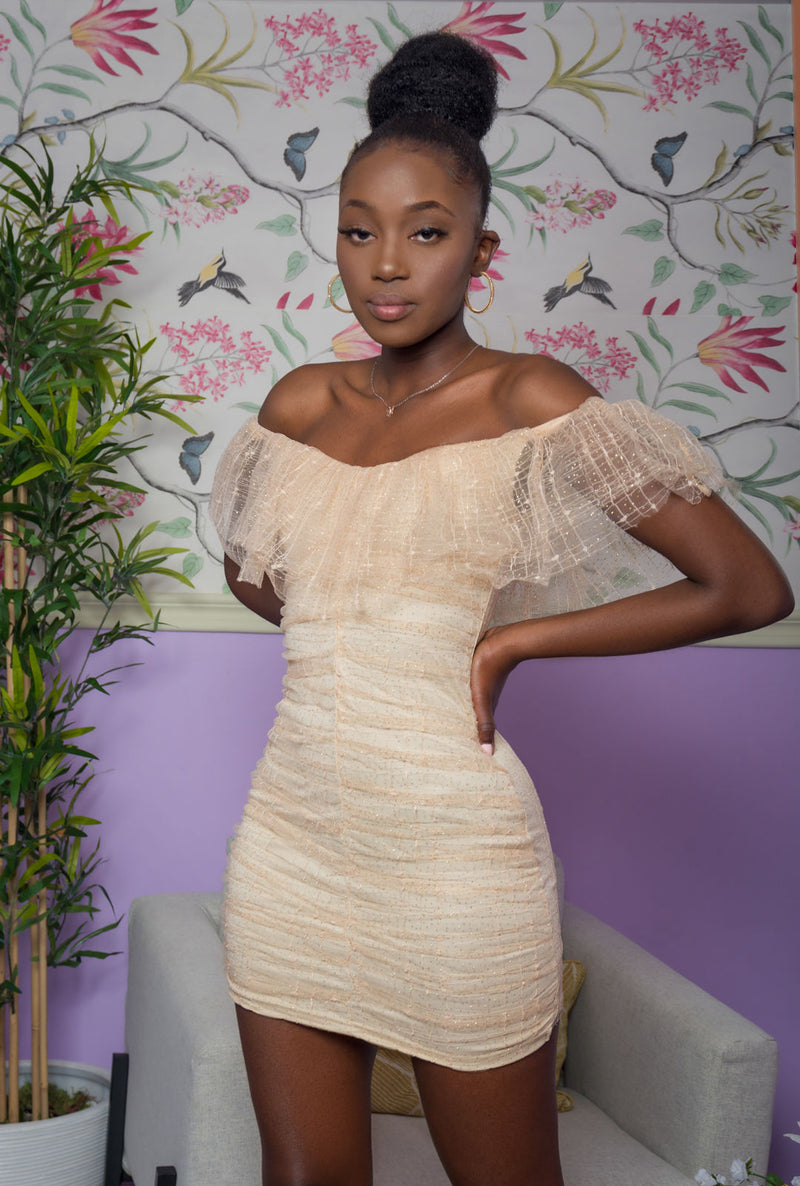 Brown Mesh Sequin Off Shoulder Ruffle Off-the-Shoulder Dress