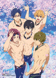 Free! Group In Pool With Sakura Wall Scroll