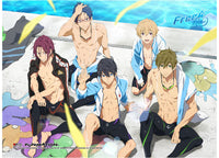 Free! Iwatobi Swim Club Group Swimsuit Wall Scroll