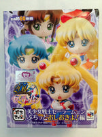 Sailor Moon Punishment and Petit Chara Figures (1 Random Blind Box) Shadow Anime