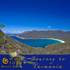 Journey to Tasmania