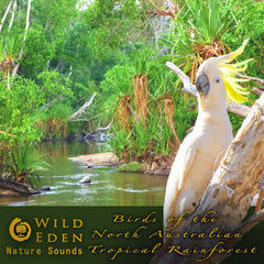Birds of the North Australian Tropical Rainforest