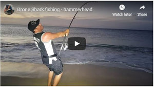 Splash Drone 3 Shark fishing - Found Hammerhead