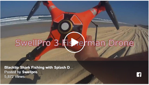 Shark Fishing with Swellpro Splash Drone 3