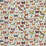 A delicate butterfly wallpaper and fabric, finely detailed and drawn in the Botanical style