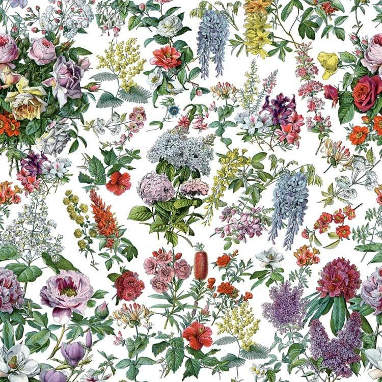A Beautiful Vintage French floral wallpaper and fabric, finely detailed and drawn in the Botanical style.
