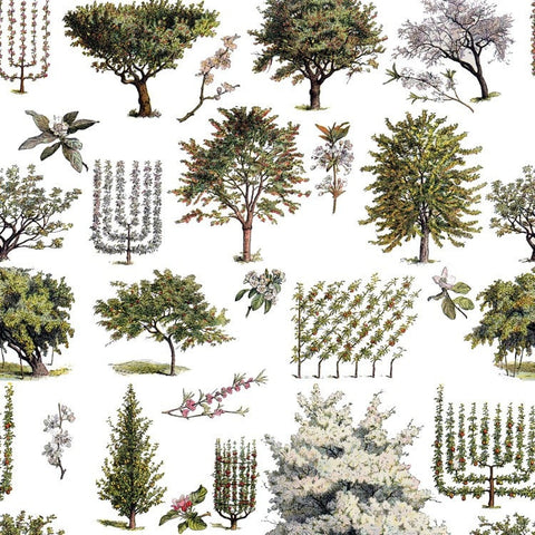 A pretty Vintage inspired orchard wallpaper and fabric, finely detailed and drawn in the Botanical style.