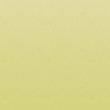 Lime Parchment Ombre - DebbieMcKeegan - Wallpaper - 2