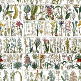 A pretty Vintage inspired wallpaper and fabric, finely detailed and drawn in the Botanical style.
