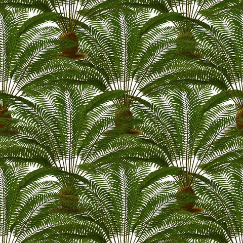 Rock the #Greenery Trend with this gorgeous Palm leaves wallpaper and fabric, finely detailed and drawn in the Botanical style.