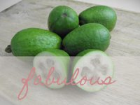 Feijoa recipe healthy living Ahuriri Pharmacy