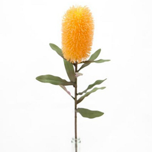 FLOWER SYSTEMS Yellow Banksia Spray 72cm