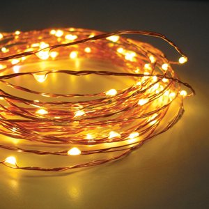 SEED LIGHTS Copper Wire 2metre 20 Lights Warm White (Battery)