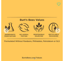 Load image into Gallery viewer, Burt's Bees Kissable Color Set