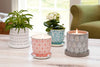 Simple Ways to Reuse and Repurpose Candle Jars