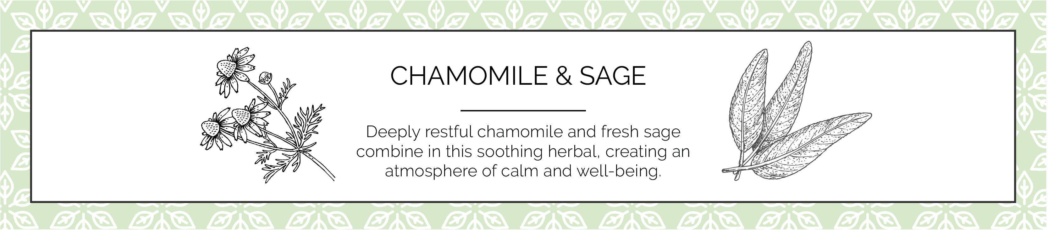 Camomile and Sage Candle Fragrance
