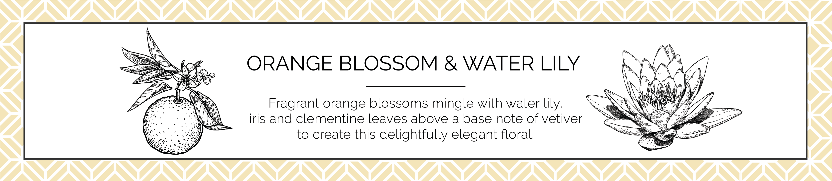 Orange Blossom and Water Lily Candle Fragrance