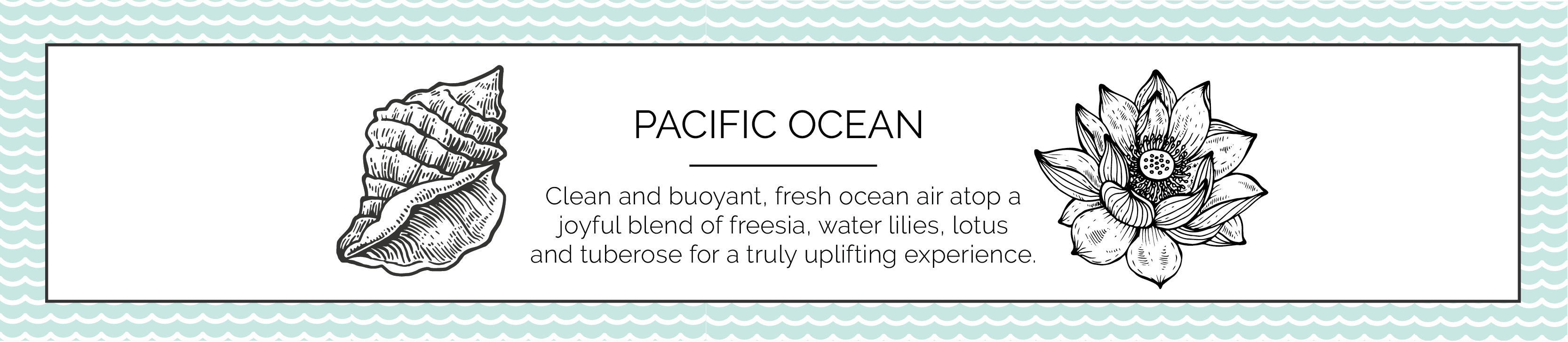 Pacific Ocean Candle Fragrance