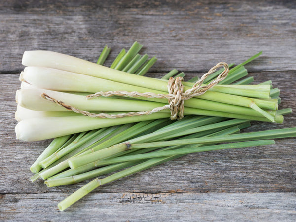 Lemongrass | 5 Favorite Aromatherapy Scents for Stress Relief