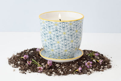 This yellow star Liberte pot is poured in a coconut soy blend wax by women artisans in the United States. Once the wax is gone, the vessel turns into a place to plant beautiful plants and flowers.