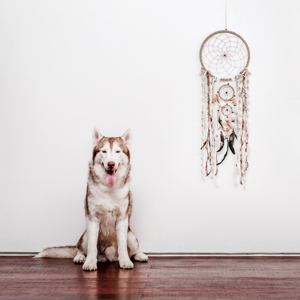 "Caught Dreams Dream Catcher ~ Natural String Wool & Feathers, BOHO, Hippie, Bohemian Style 10.5"" x 36"" Long! …"