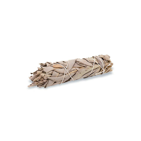 White Sage - Smudge Stick