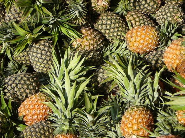 Simple Pineapple