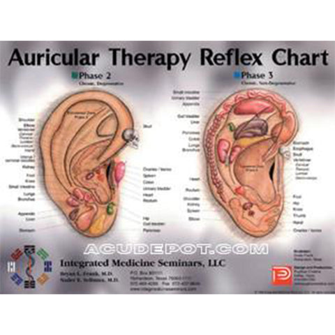 "AURICULAR THERAPY - 8.5"" X 11"" CARD"