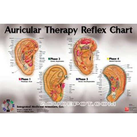 "AURICULAR THERAPY - 24"" X 36"" WALL CHART"