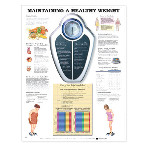 MAINTAINING HEALTHY WEIGHT