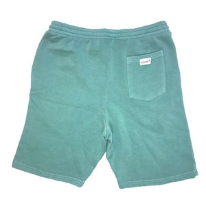 Amazonite Shorts (Seafoam)