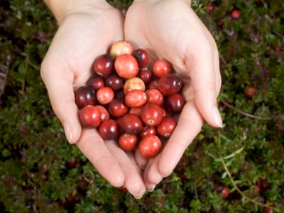 Why You Should Be Eating Cranberries