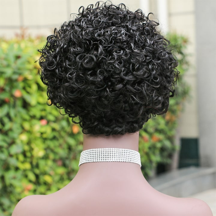 women fashion Afro wigs