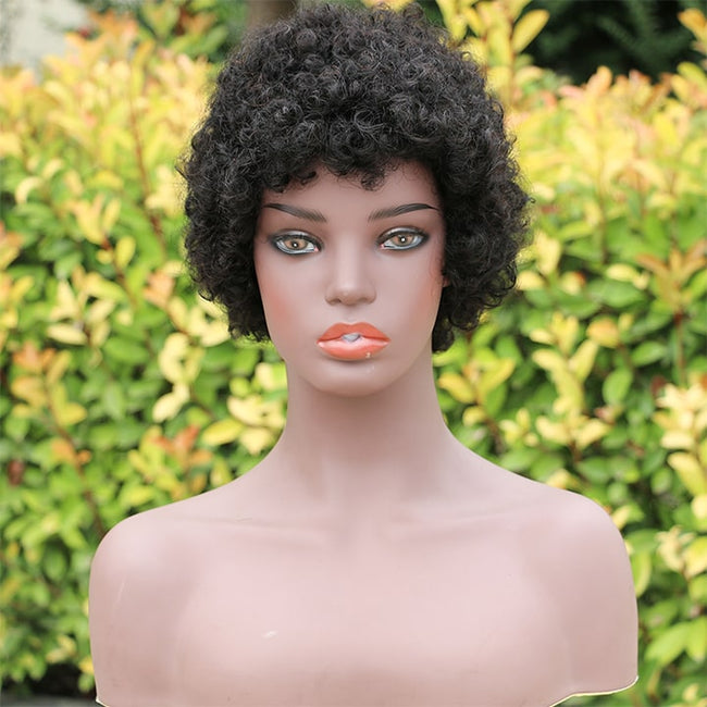 short curly human hair wigs