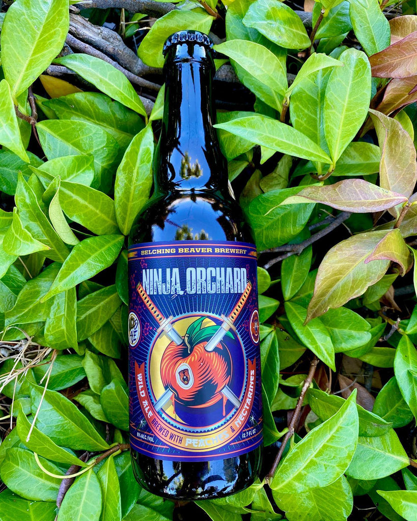 Ninja Orchard - Wild Ale (12.6oz Bottle)