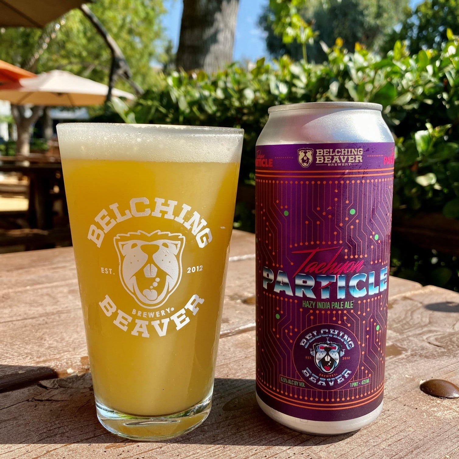 Tachyon Particle Hazy IPA 4-pack