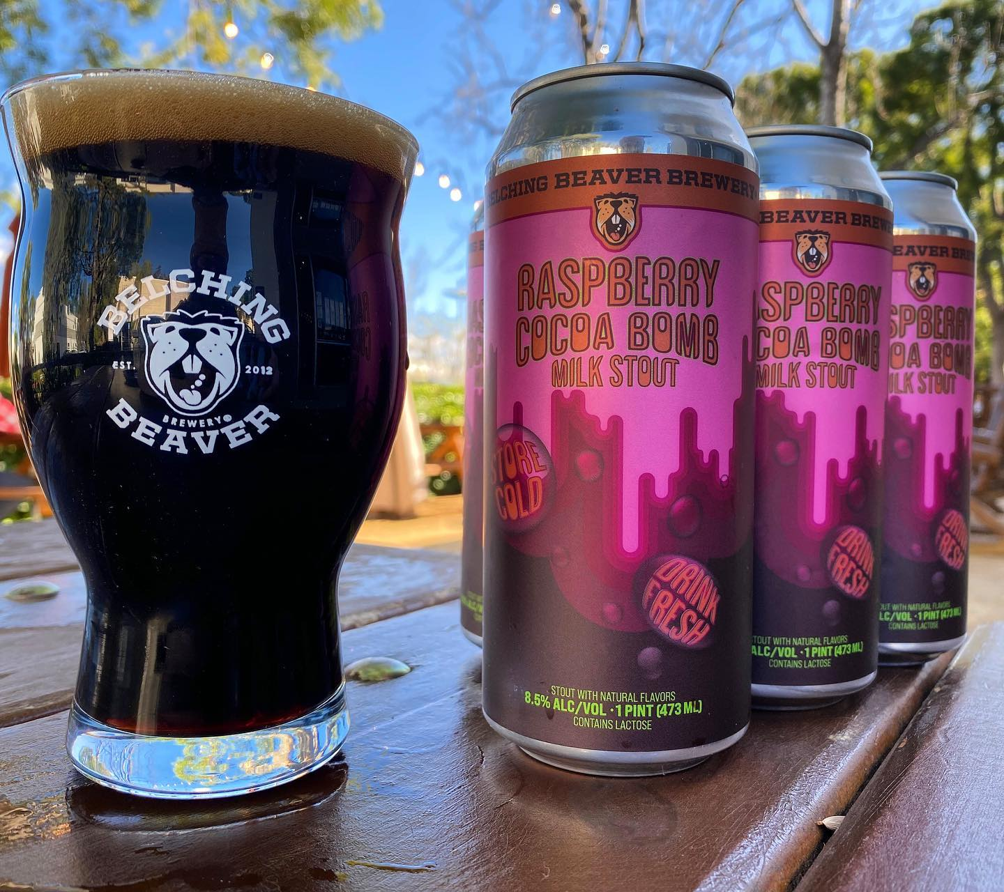 Raspberry Cocoa Bomb Stout 4-pack