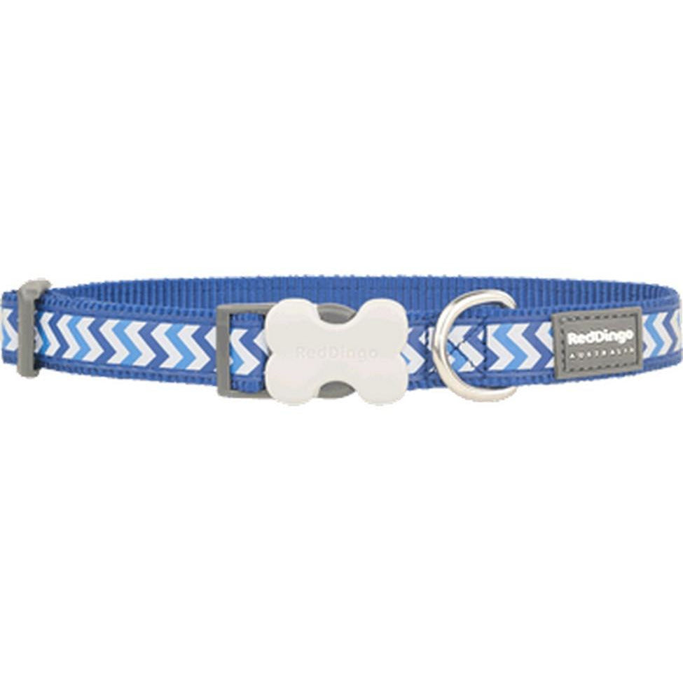 Red Dingo Bucklebone Collar Reflective (S) Ziggy Blue