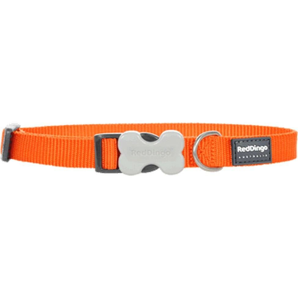 Red Dingo Bucklebone Collar (20mm) Orange
