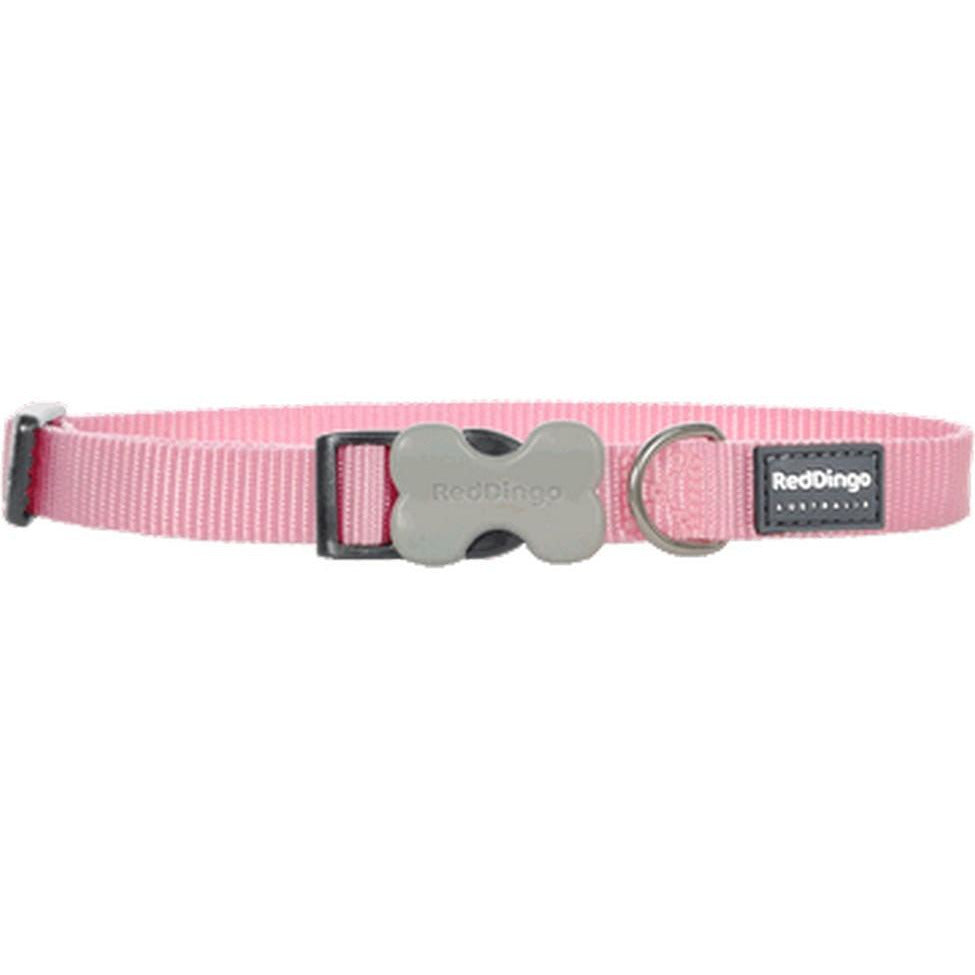 Red Dingo Bucklebone Collar (S) Pink