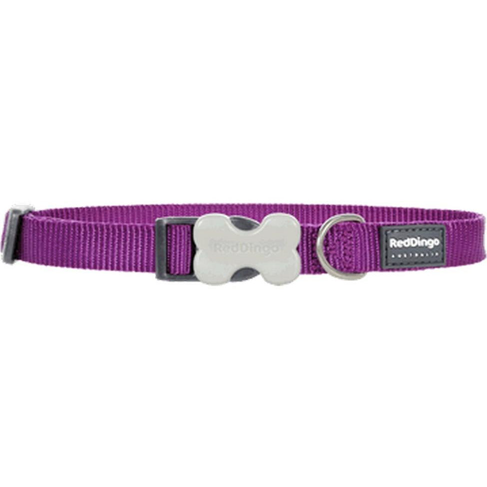 Red Dingo Bucklebone Collar (15mm) Purple