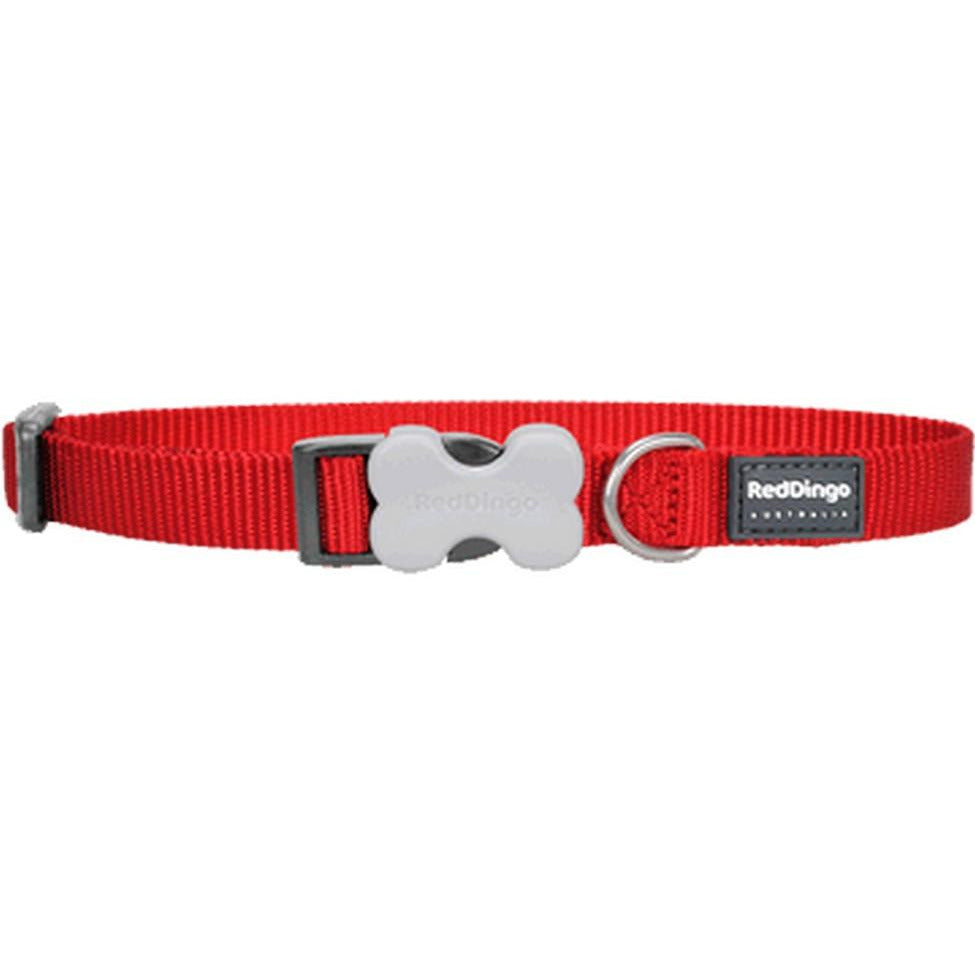 Red Dingo Bucklebone Collar (15mm) Red