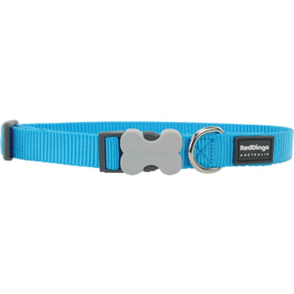 Red Dingo Bucklebone Collar (S) Turquoise