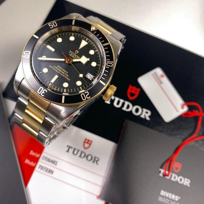Tudor Heritage Black Bay Steel & Gold 79733N