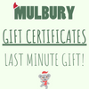 LAST MINUTE GIFT IDEAS, GIFT CERTIFICATES, LAST MINUTE GIFT CARDS AUSTRALIA, Sustainable gift certificates, Sustainable gift ideas, Eco friendly gift ideas for Christmas, recycled gift ideas Australia,
