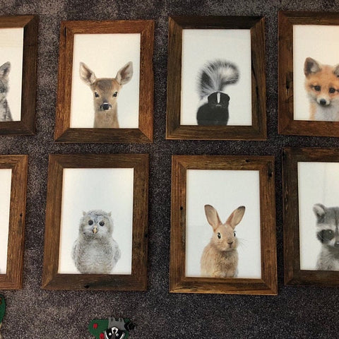 Picture Frame setting for my wall at home